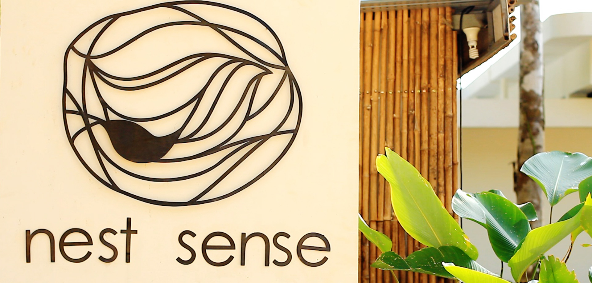 Nest Sense Resort